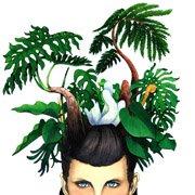 Foliage Plant Head Woman